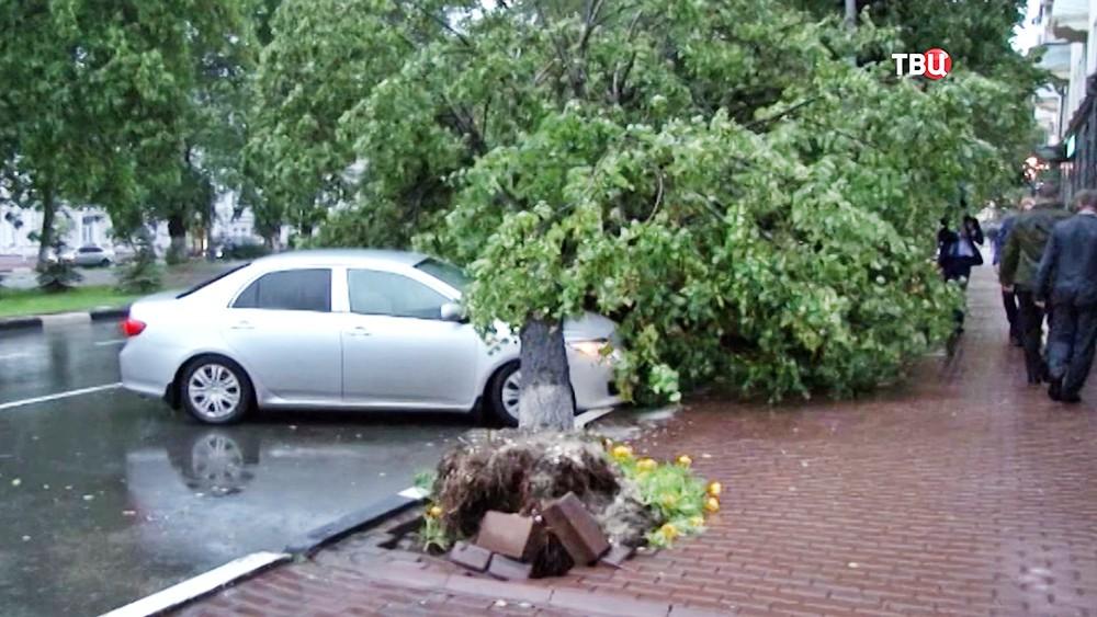 Последствия штормового ветра