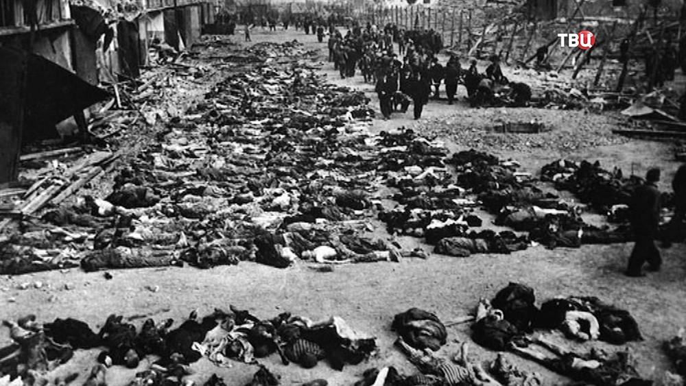 Погибшие узники немецкого концлагеря в годы Великой Отечественной войны