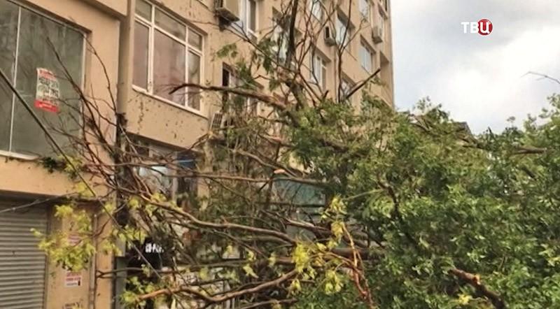 Последствие урагана в Турции