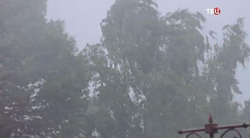 Ураган в Тверской области