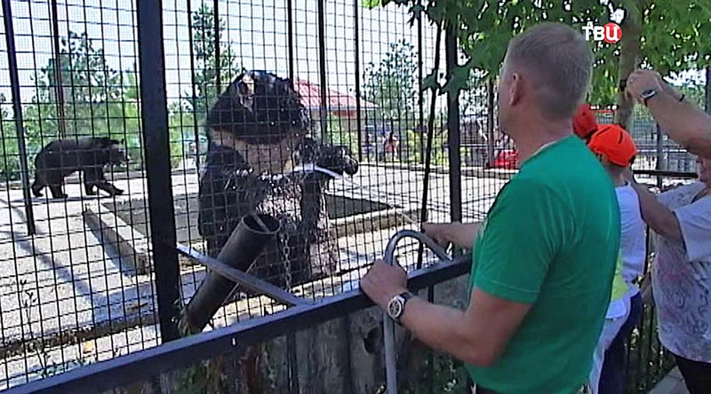 Жара в Крыму