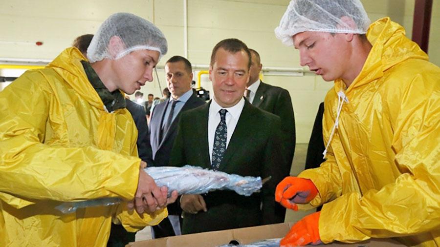 Дмитрий Медведев посетил рыбоперерабатывающий завод