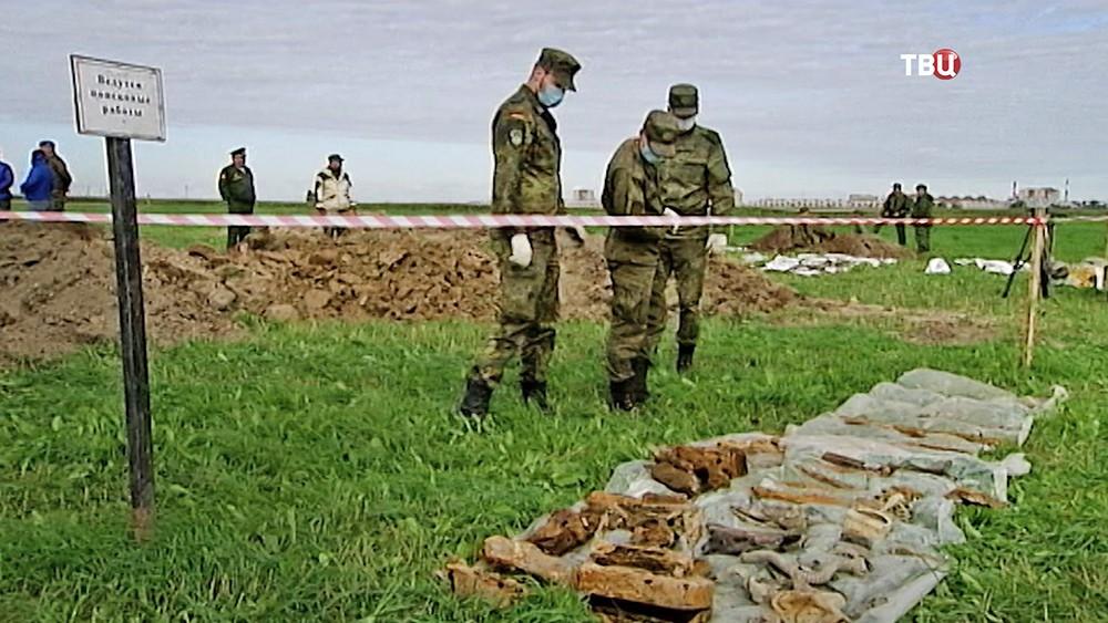 Российские и немецкие военные проводят поисковые работы погибших в ВОВ
