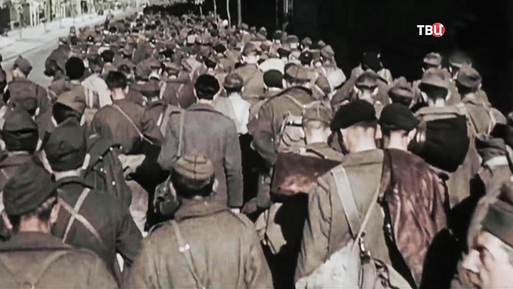 Пленные на кадрах Великой отечественной войны