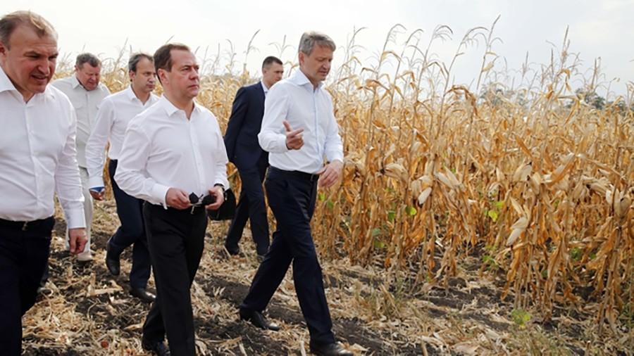 Дмитрий Медведев осматривает сельскохозяйственные угодия