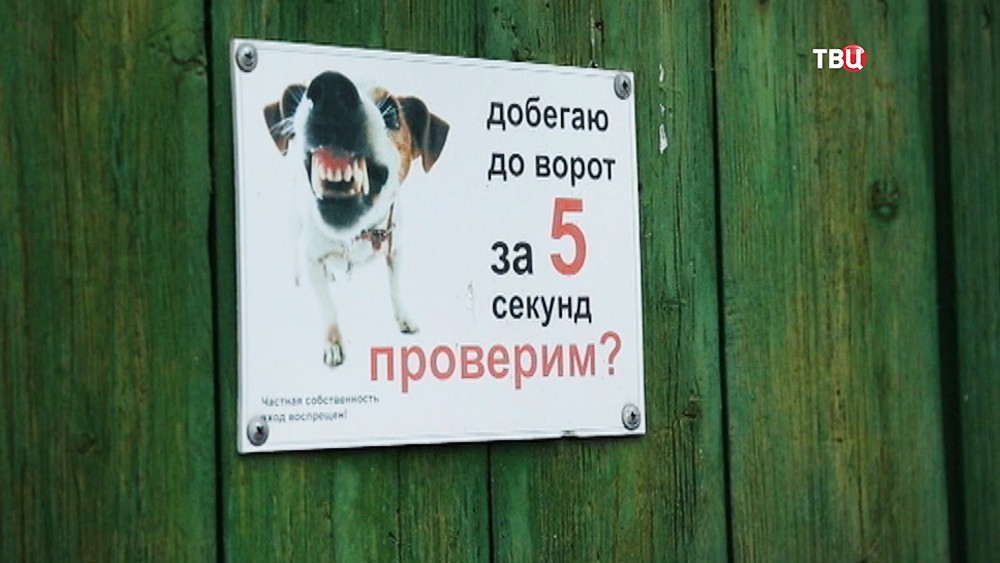 Табличка о наличии собак на территории участка