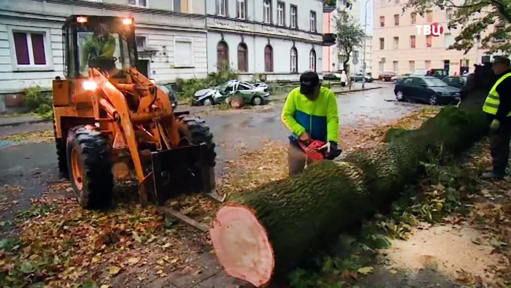 Последствия урагана в Европе
