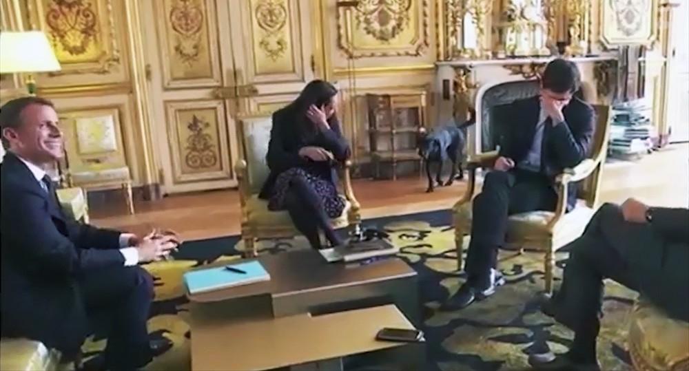 Собака Макрона прервала совещание, справив нужду в Елисейском дворце