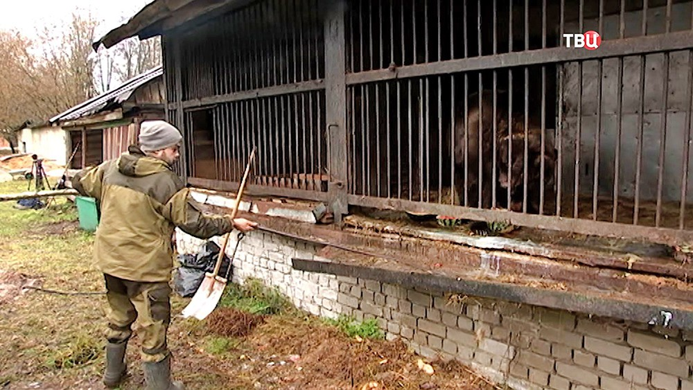 Клетки с животными в кинозверобазе в Леоново