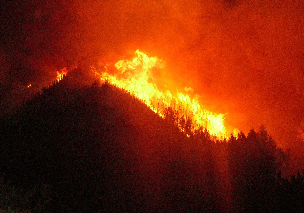 Лесные пожары в США