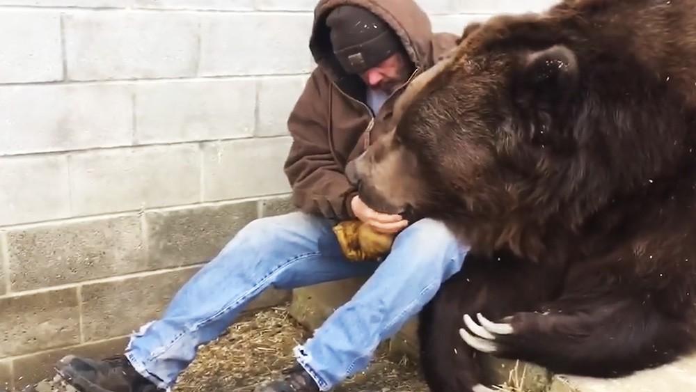 Житель США показал, как утешить медведя