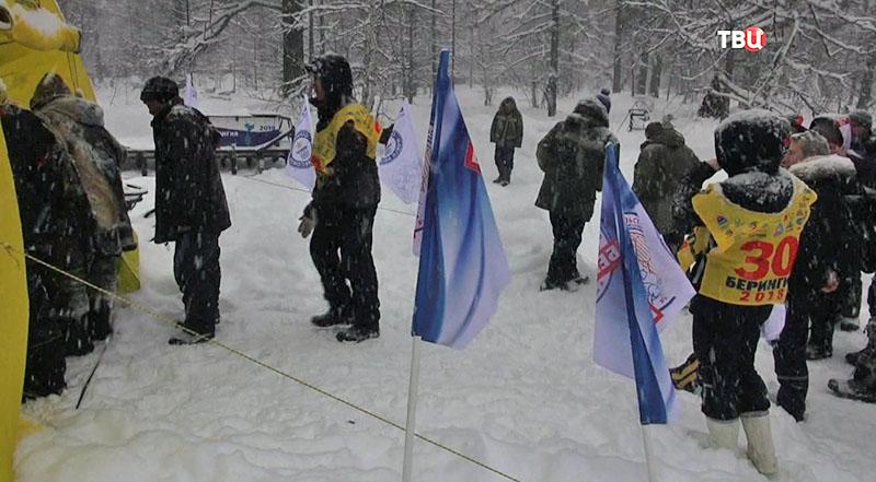 Выборы в Сибири