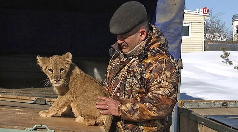 Руководитель центра передержки Виталий Ратнер и львенок
