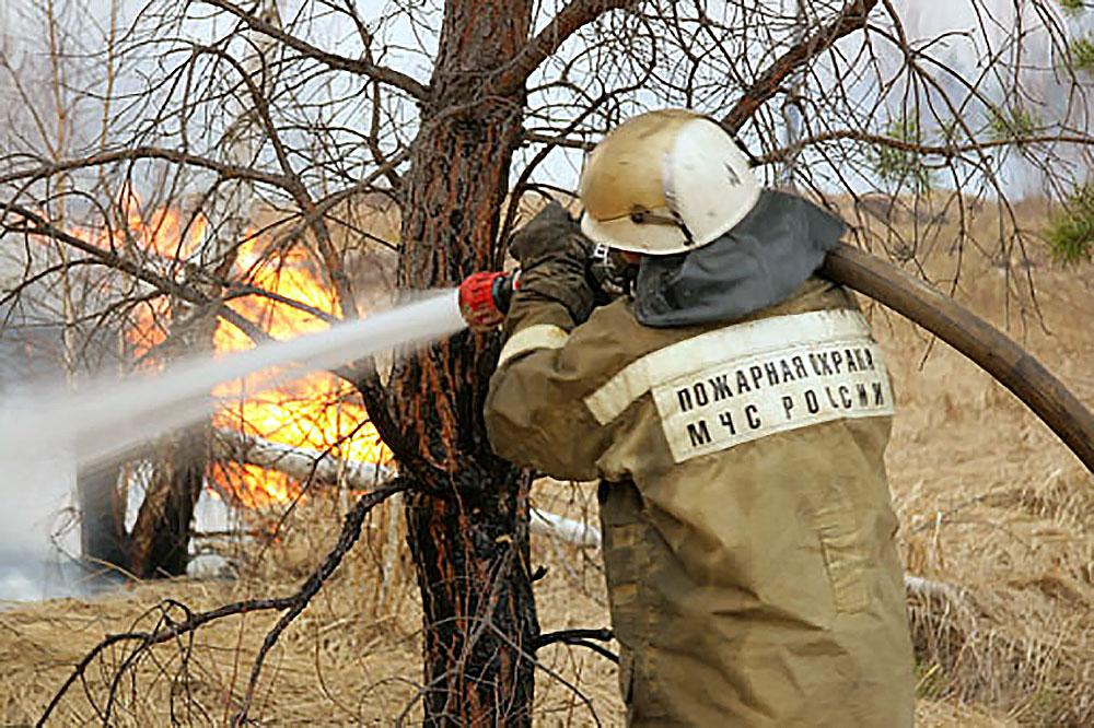 Тушение лесных пожаров