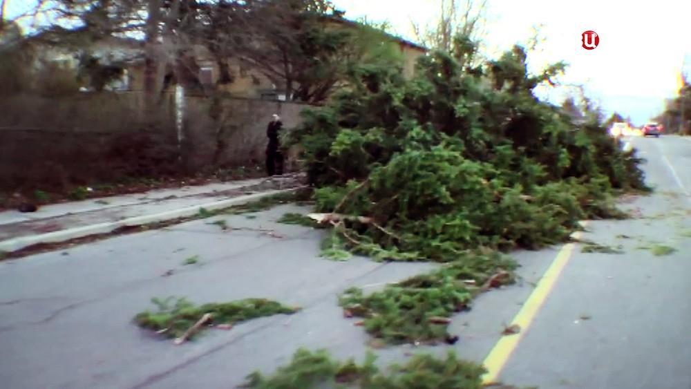 Последствия урагана в Канаде