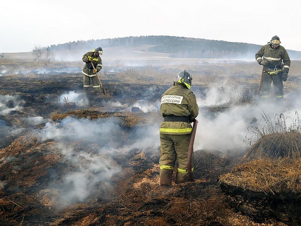 Последствия степного пожара