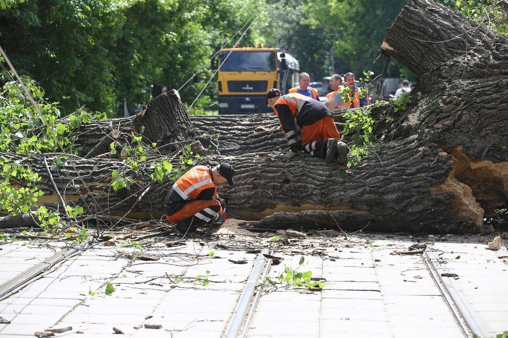 Устранение последствий падения дерева на трамвайную линию электропередач на набережной Академика Туполева