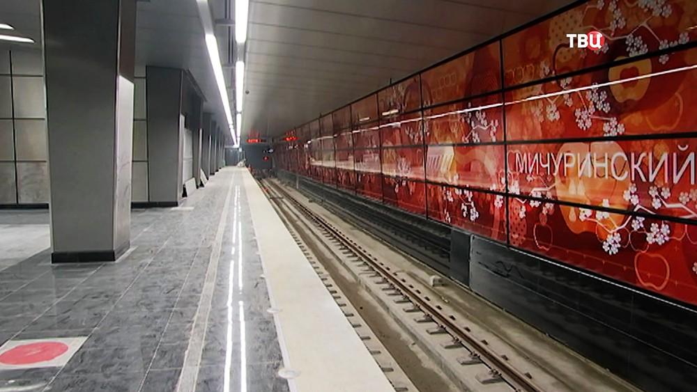 "Станция метро ""Мичуринский проспект"""