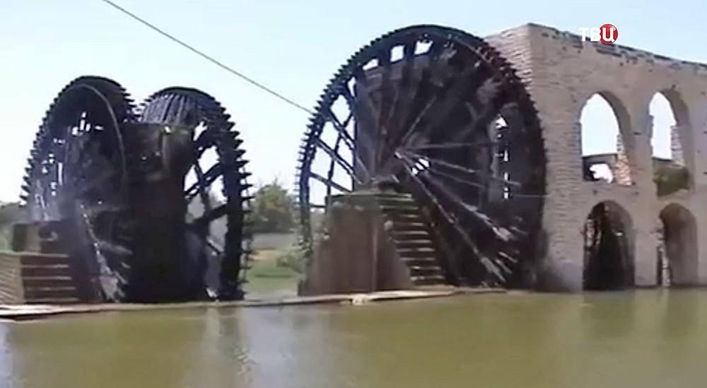 Водяные колёса в Сирии