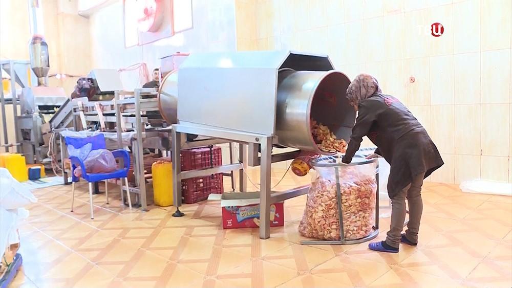 Фабрика по производству чипсов в Сирии