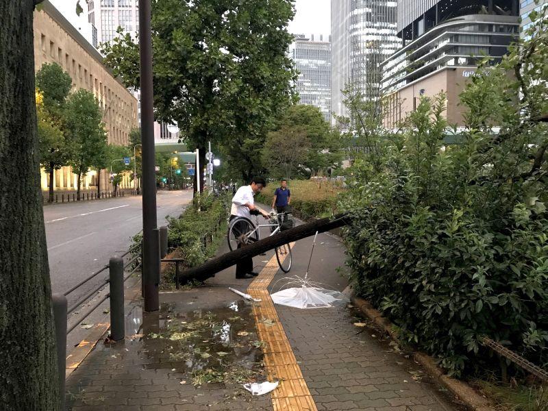 "Последствия тайфуна ""Джеби"" в Японии"