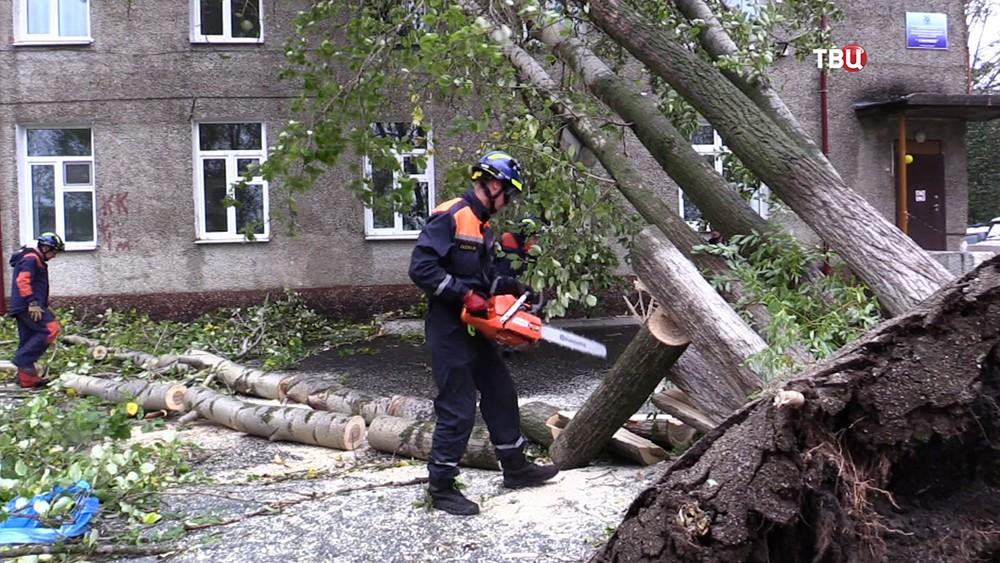 Спасатели МЧС убирают упавшие деревья