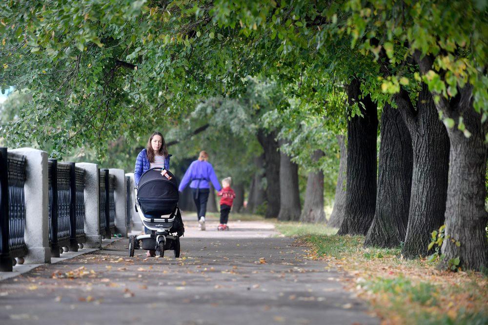 Гуляющие в парке