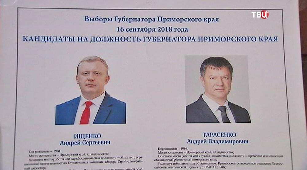 Кандидаты в губернаторы Приморского края
