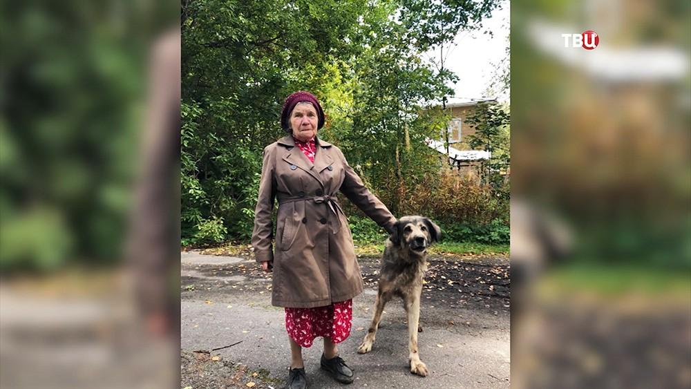 Сотрудники МЧС спасли застрявшую в глине собаку