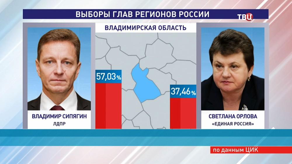 Результат выборов главы региона во Владимирской области