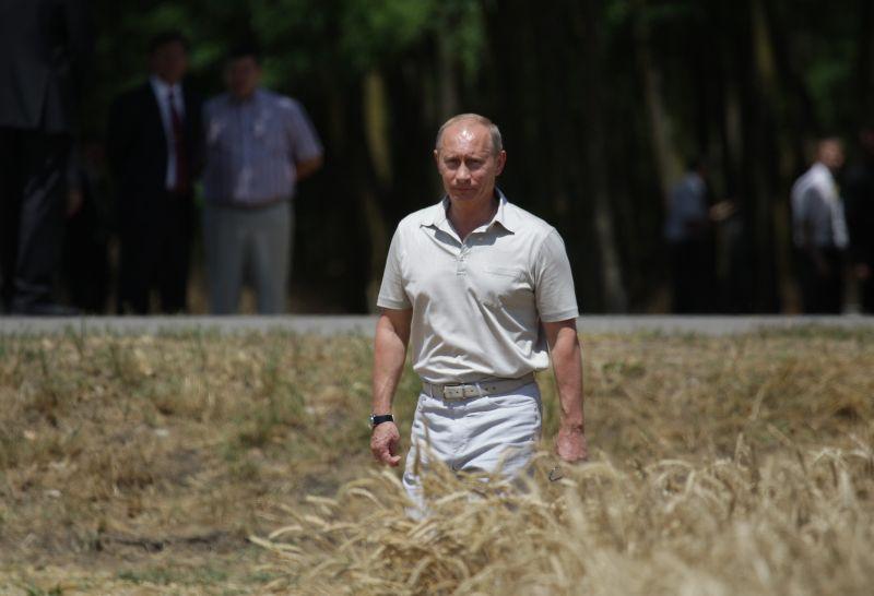 Владимир Путин в поле