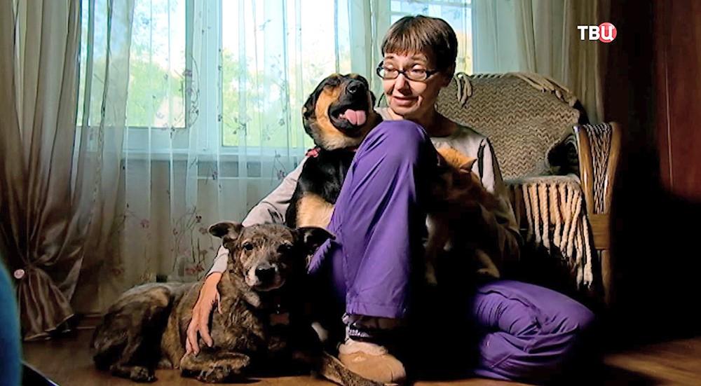 Фостерная семья для домашних животных