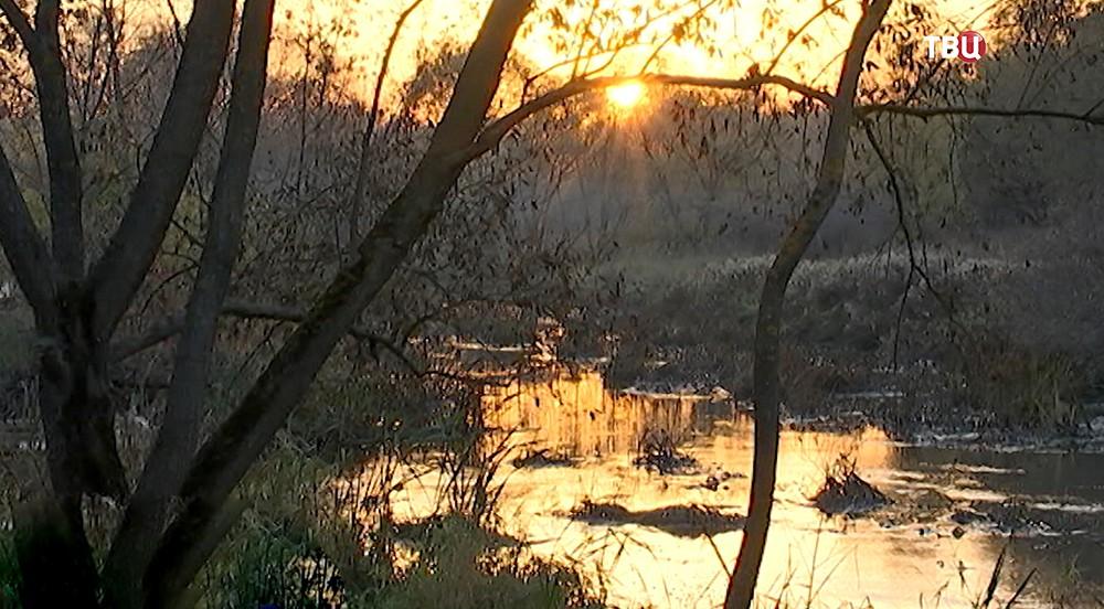 Парк вдоль берегов Яузы