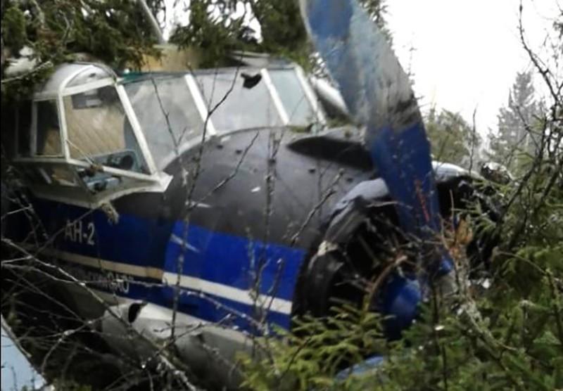 Самолет Ан-2, совершивший вынужденную посадку в лесу