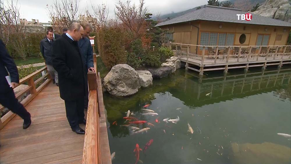 Владимир Путин в Ялте покормил рыбок