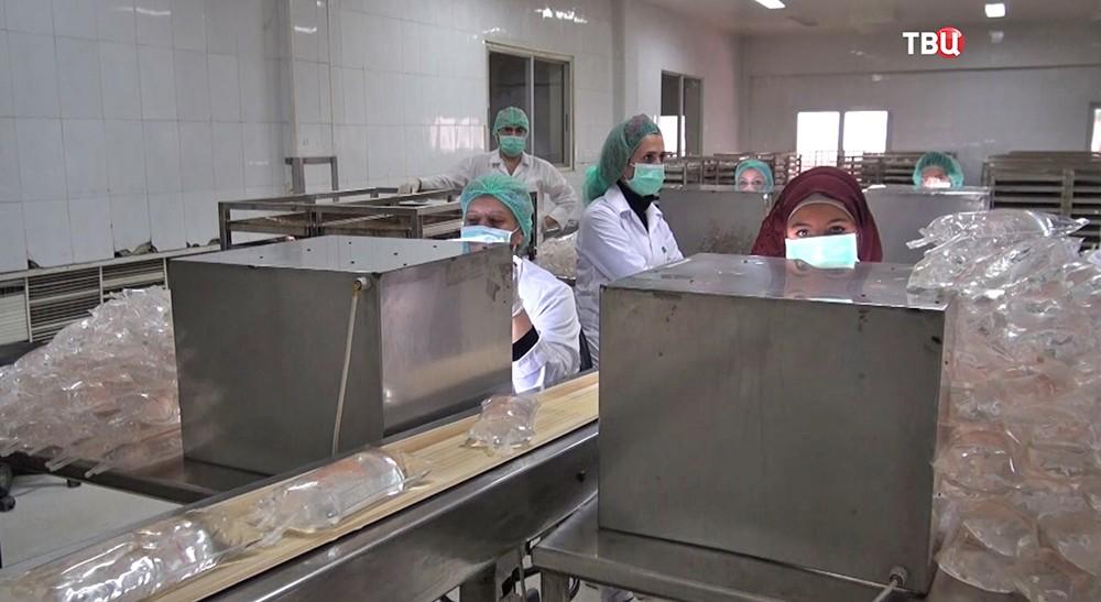 Фармацевтический завод в Сирии