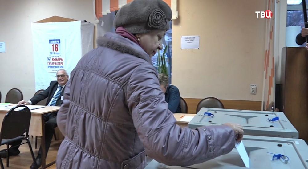 Выборы в Приморье