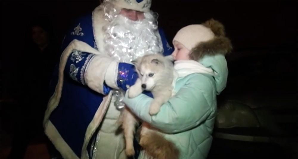 Дед Мороз подарил девочке собаку