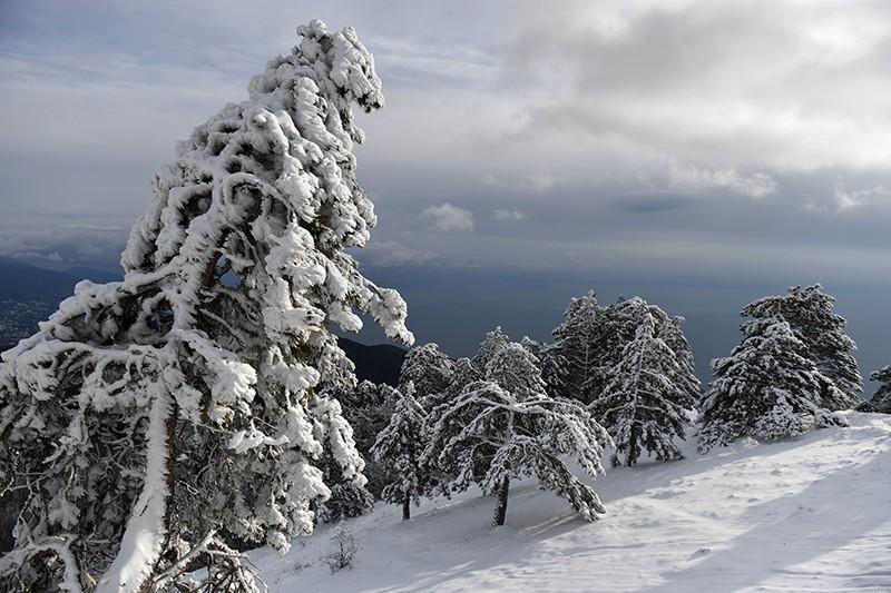 Снег на плато Ай-Петри в Крыму