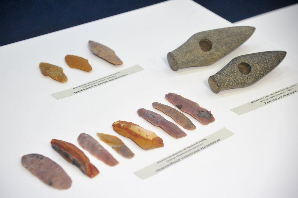 Пресс-конференция, посвященная археологическим находкам фатьяновской культуры в Истринском районе Подмосковья
