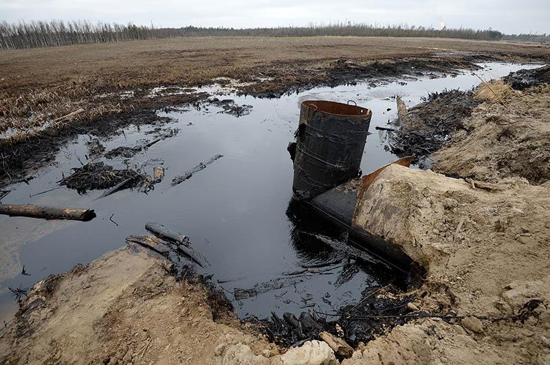 В России ужесточат наказание за причиненный экологии вред