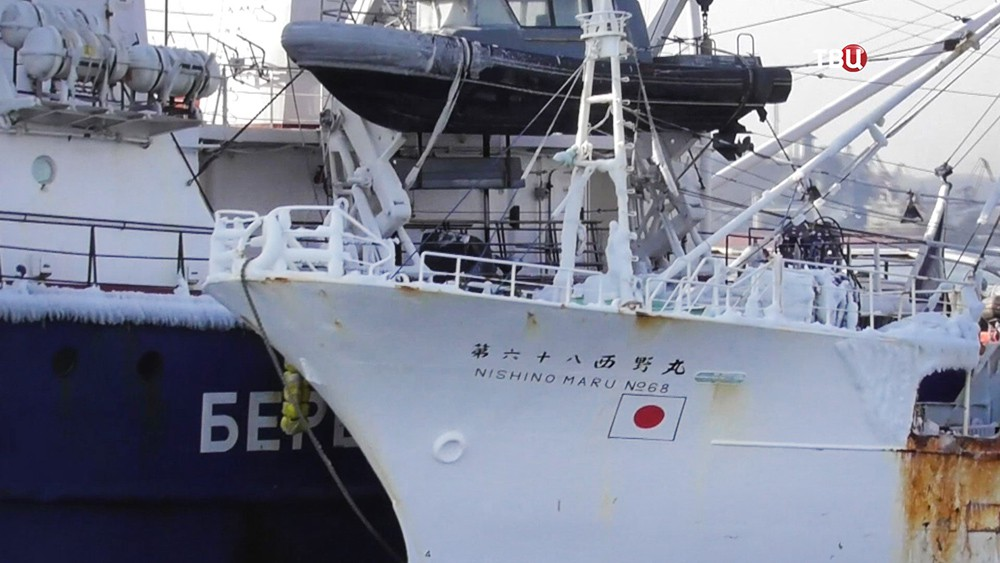 """Японская рыболовная шхуна """"Нисиномару-68"""" задержанная за браконьерство"""