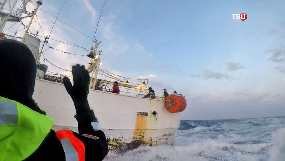 Задержание японского судна за браконьерство