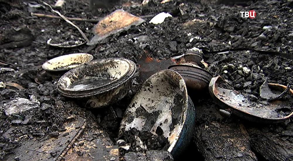 Последствия пожара в центре для передержки животных