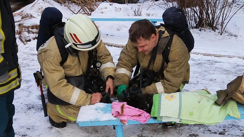 Смоленские пожарные спасли кота с помощью кислородной маски