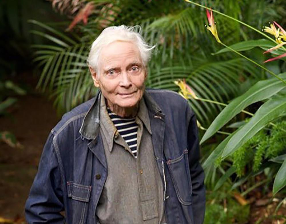 Писатель Уильям Мервин