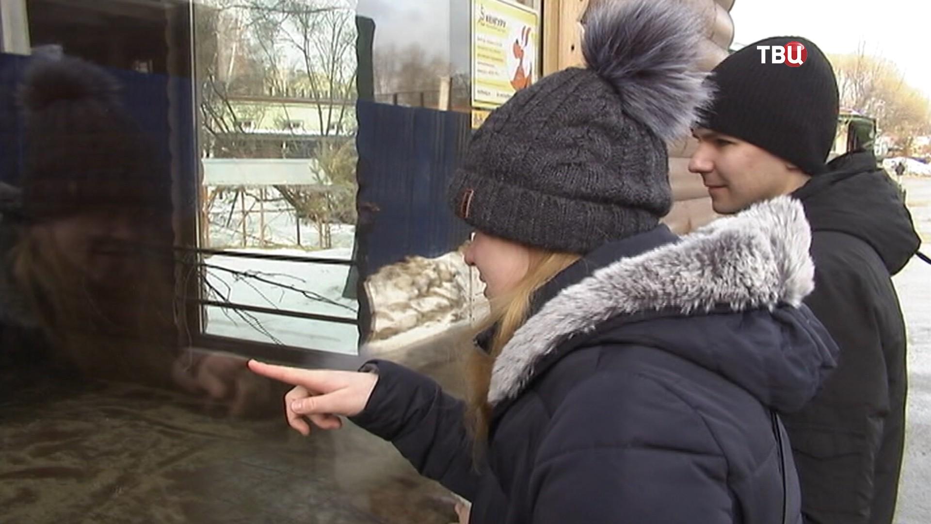 Посетители зоопарка в Санкт-Петербурге
