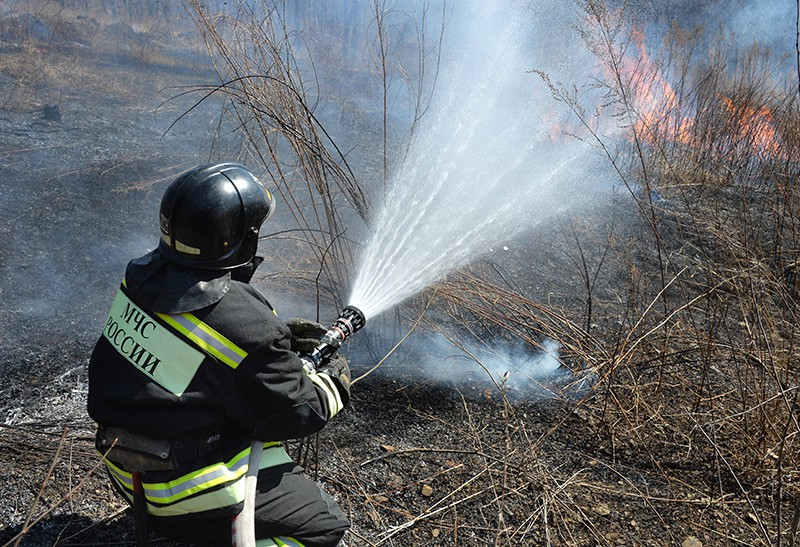 Лесные пожары в Приморском крае