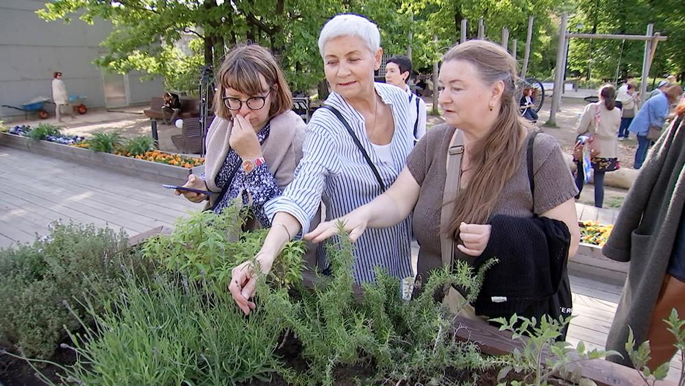 Тактильный сад в Аптекарском огороде