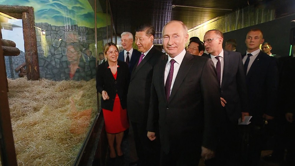 Владимир Путин и Си Цзиньпин в Московском зоопарке